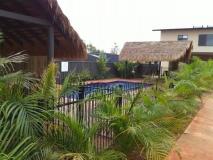 pool-ferns